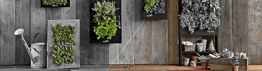 Tips-para-Sembrar-tu-Propio-Jardín-Vertical