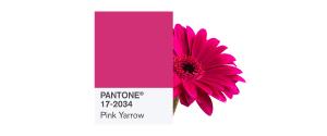 PANTONE-17-2034-Pink-Yarrow